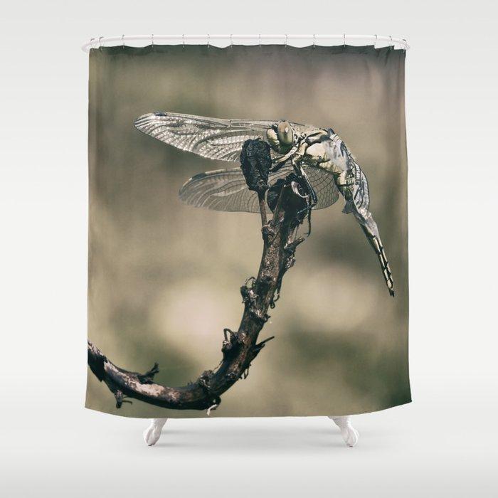 "The little predator ""Orthetrum cancellatum"" Shower Curtain"