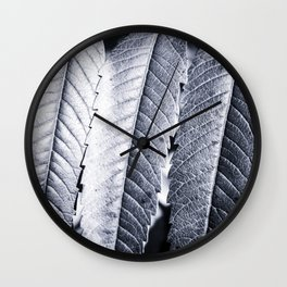 Beautiful Staghorn Sumac bush plant colorful leaves in autumn season Wall Clock