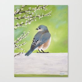Bluebird and Blossoms Canvas Print