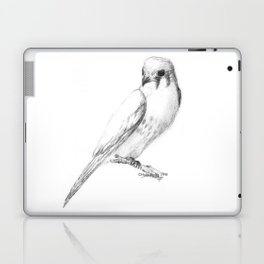 Kestrel quarter Laptop & iPad Skin
