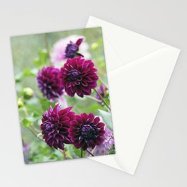 Longwood Gardens Autumn Series 157 Stationery Cards