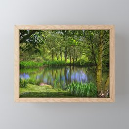 Spring views Framed Mini Art Print