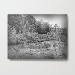 Magnificent River in Black and White Metal Print