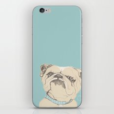 bulldog iPhone & iPod Skin