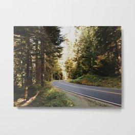 Mount Rainier Forest Metal Print