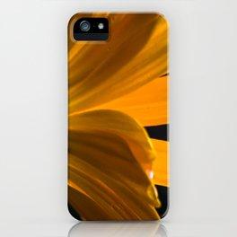 unterwegs_1110 iPhone Case