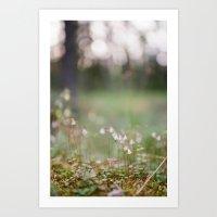 Linnea Borealis Flower Art Print