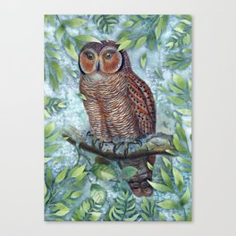 Forest Owl Canvas Print