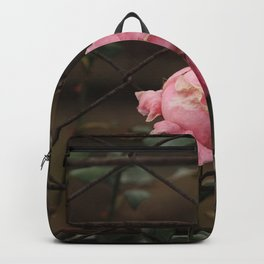 Rose flower growing on the iron grid Backpack