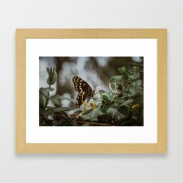 in the quiet moments Framed Art Print