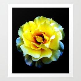 Blossom... (Yellow) Art Print
