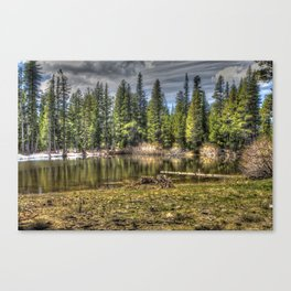 Reflecting Pond at Carson Spur, Amador County CA Canvas Print