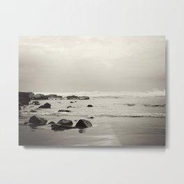 Wild Coast South Africa Metal Print