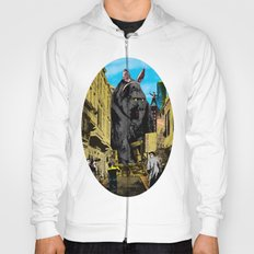 In search of the magical moment Hoody