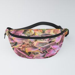 green and pink succulent plant garden texture background Fanny Pack