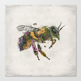 Must be the honey Canvas Print