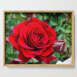 Rose revolution Serving Tray