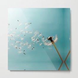Dandelion Blowing in the Wind Metal Print