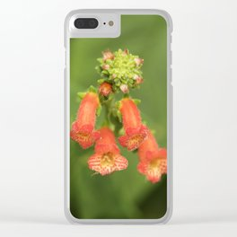 Kohleria from Bud to Bloom Clear iPhone Case