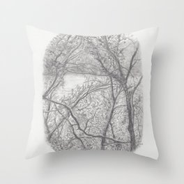 Glimpse of Nature Throw Pillow