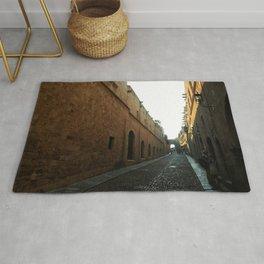 narrow and long street Rug