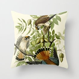 American Sparrow Hawk (Falco sparverius) Throw Pillow