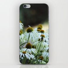 Make every moment matter iPhone & iPod Skin