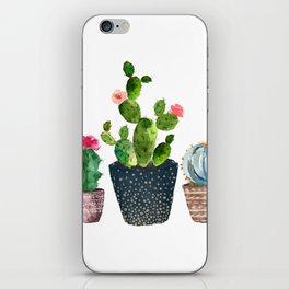 Watercolor cactus trio | hand painted cactus print iPhone Skin