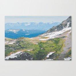 Alpine Mosses Canvas Print