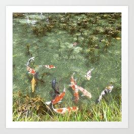 japanese carp Art Print