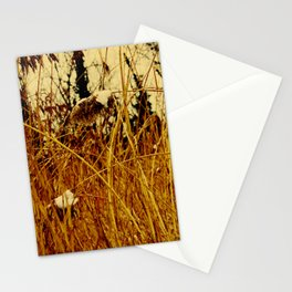 Snow covered pond reeds Stationery Cards