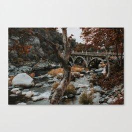 three rivers bridge Canvas Print