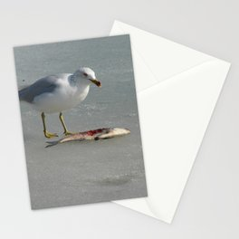 I Eat Fish, Seagull on Ice With Its Meal Stationery Cards