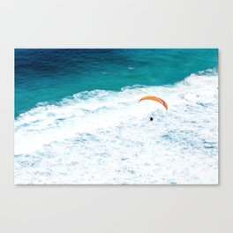 Given to Fly II Canvas Print