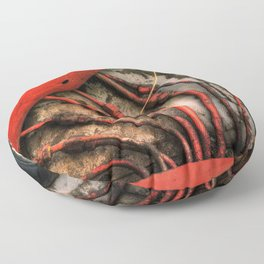 Red Ray of God Floor Pillow