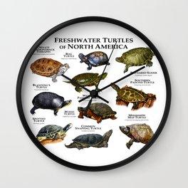 Freshwater Turtles of North America Wall Clock
