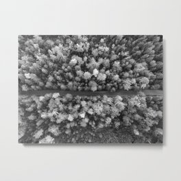 The Forest (Black and White) Metal Print