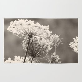 Lace in the Meadow BW II Rug