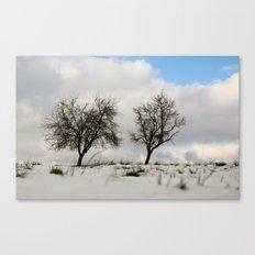 White dreams Canvas Print