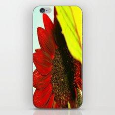 Enamored  iPhone & iPod Skin
