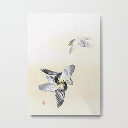 Two Fighting Birds Metal Print