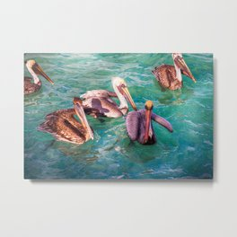 Pelicans in the Caribbean Sea Metal Print