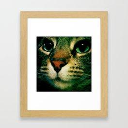 Puss Framed Art Print