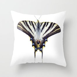 Scarce Swallowtail With Large Wingspan Vector Throw Pillow