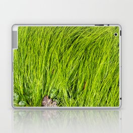 Verdure Laptop & iPad Skin