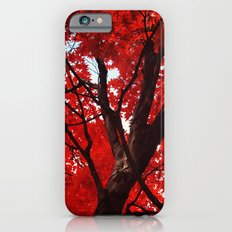 Red Canopy iPhone 6s Slim Case
