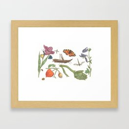 Common place miracles -Natural History Part 1 Framed Art Print