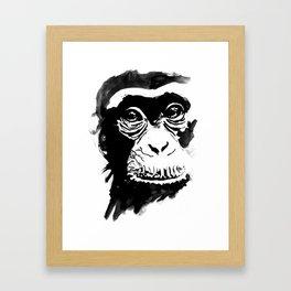 chimpanze Framed Art Print