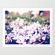 From the Ground Art Print