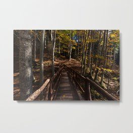 Wooden bridge crosses the forest illuminated by the autumn sun Metal Print
